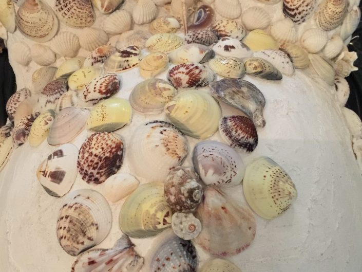 shells sea shells art